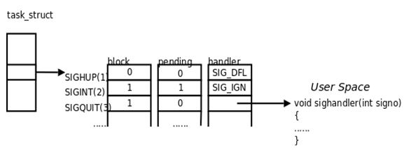 signal task structure